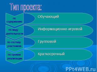 по виду деятельности по составу участников по срокам реализации