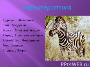 Царство :Животные Царство :Животные Тип :Хордовые Класс :&nbsp