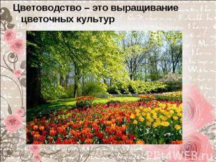 Цветоводство – это выращивание цветочных культур Цветоводство – это выращивание