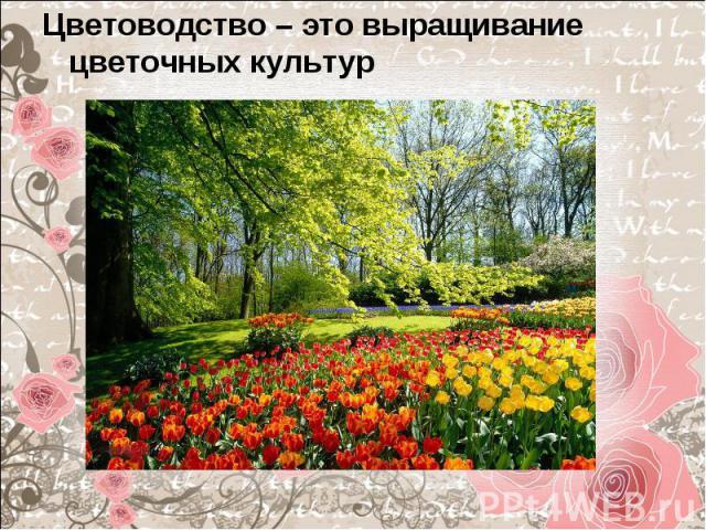 Цветоводство – это выращивание цветочных культур Цветоводство – это выращивание цветочных культур