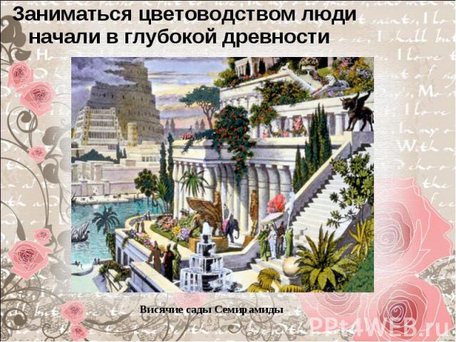 Заниматься цветоводством люди начали в глубокой древности Заниматься цветоводством люди начали в глубокой древности