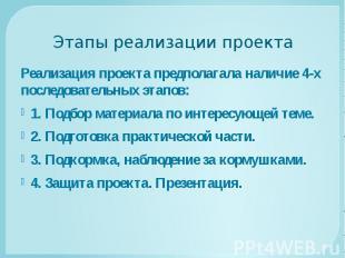 Этапы реализации проекта Реализация проекта предполагала наличие 4-х последовате
