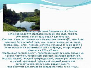 От города Щёлкова до притоков Владимирской области непригодны для употребления в