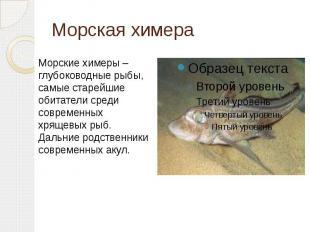 Морская химера