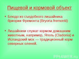 Пищевой и кормовой объектБлюдо из съедобного лишайника бриории Фремонта (Bryoria