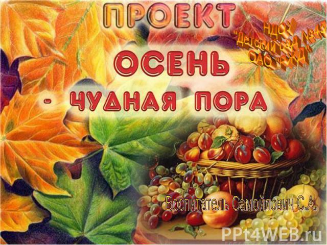 Воспитатель Самойлович С.А.