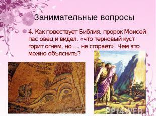 4. Как повествует Библия, пророк Моисей пас овец и видел, «что терновый куст гор