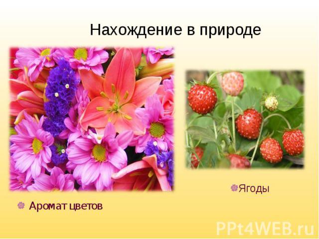 Аромат цветов Аромат цветов