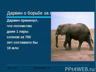 Дарвин о борьбе за существование Дарвин прикинул,что потомство даже 1 пары слоно