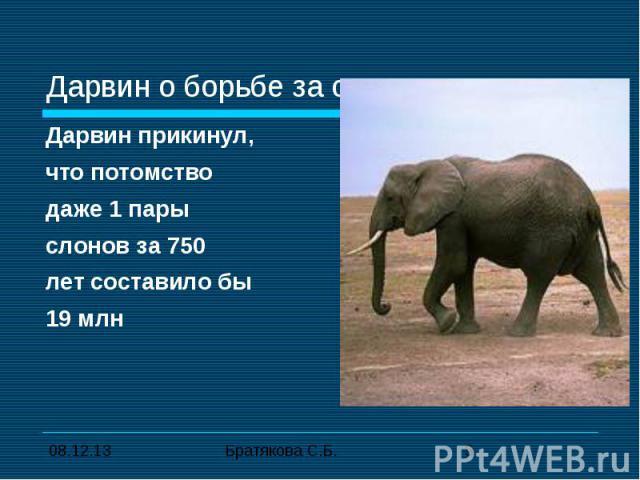 Дарвин о борьбе за существование Дарвин прикинул,что потомство даже 1 пары слонов за 750лет составило бы 19 млн