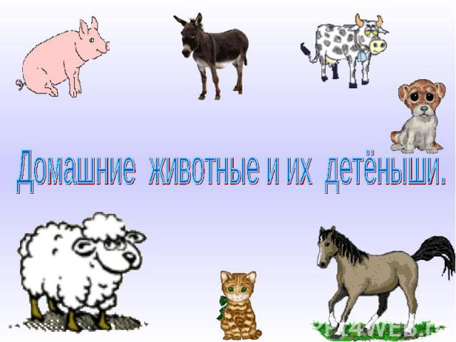 Домашние животные и их детёныши.