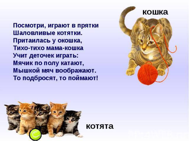 Посмотри, играют в пряткиШаловливые котятки.Притаилась у окошка,Тихо-тихо мама-кошкаУчит деточек играть:Мячик по полу катают,Мышкой мяч воображают.То подбросят, то поймают!