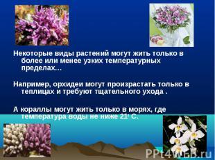 Некоторые виды растений могут жить только в более или менее узких температурных