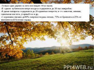 -Только одно дерево за лето поглощает 44 кг пыли;-В одном кубическом метре возду