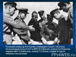 Полковой комиссар В.А.Сычёв, командарм 2 ранга Г.М.Штерн, Полномочный посол СССР