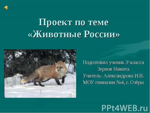Реферат по географии на тему животные россии 2926