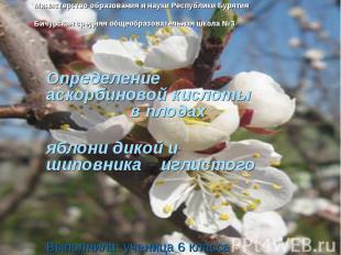 Министерство образования и науки Республики БурятияБичурская средняя общеобразов