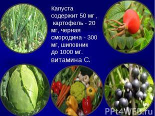 Капуста содержит 50 мг , картофель - 20 мг, черная смородина - 300 мг, шиповник
