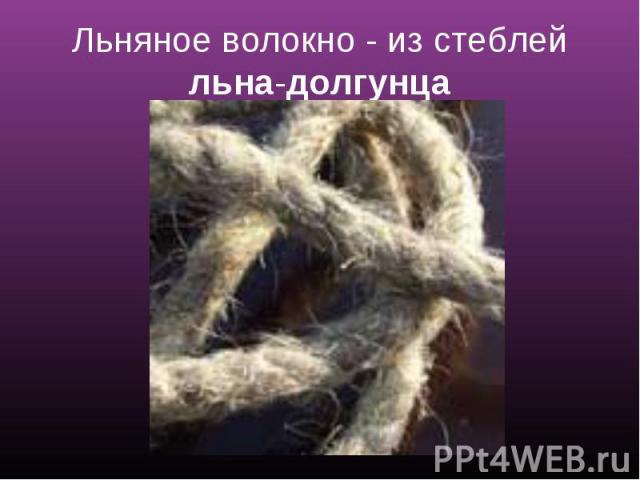 Льняное волокно - из стеблей льна-долгунца