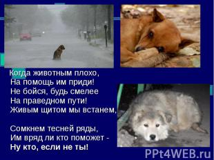 Когда животным плохо, На помощь им приди! Не бойся, будь смелее На праведном пут