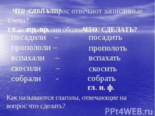 На какой вопрос отвечают записанные слова?посадили –пропололи –вспахали –скосили