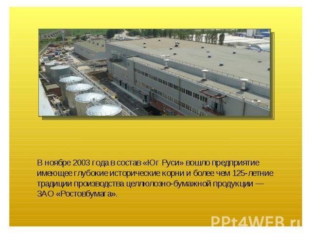 В ноябре 2003 года в состав «Юг Руси» вошло предприятие имеющее глубокие исторические корни и более чем 125-летние традиции производства целлюлозно-бумажной продукции — ЗАО «Ростовбумага».