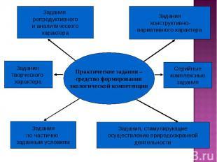 Практические задания – средство формирования экологической компетенции