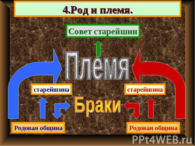 4.Род и племя. Совет старейшин