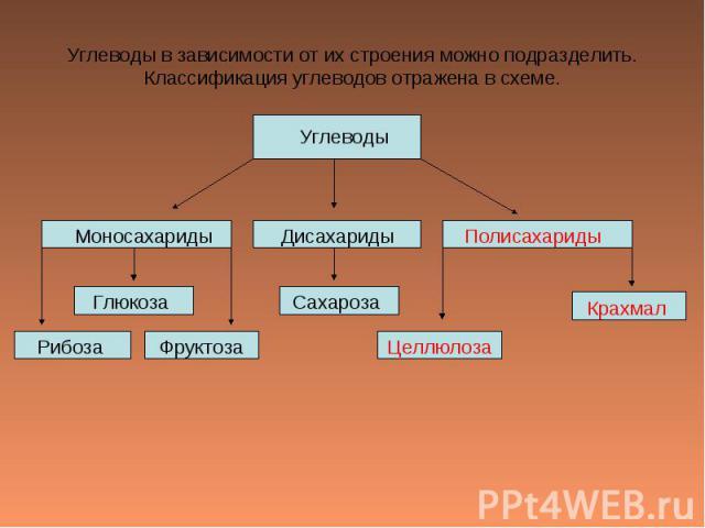Углеводы в зависимости от их строения можно подразделить.Классификация углеводов отражена в схеме.