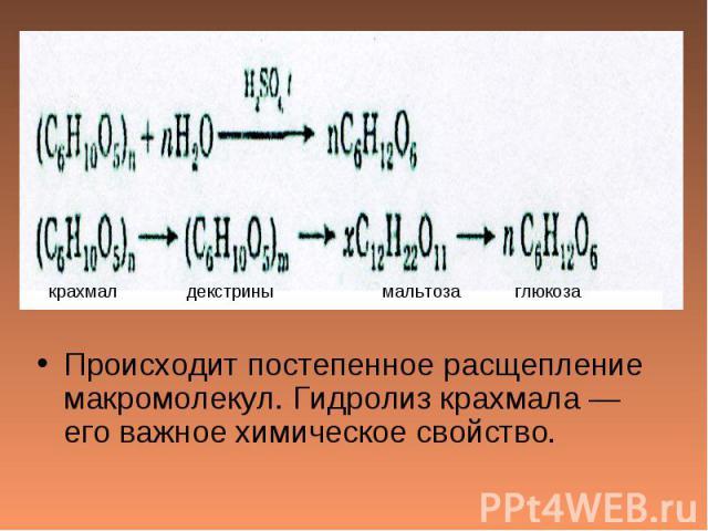 Происходит постепенное расщепление макромолекул. Гидролиз крахмала — его важное химическое свойство.