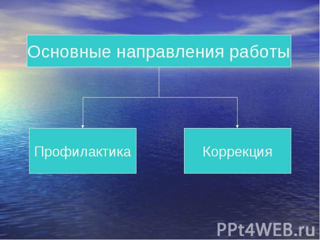 Основные направления работы