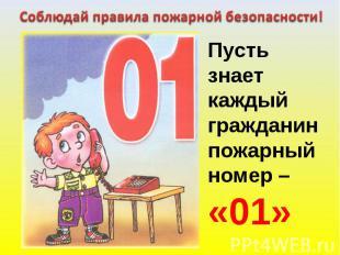 Соблюдай правила пожарной безопасности! Пусть знаеткаждыйгражданинпожарный номер