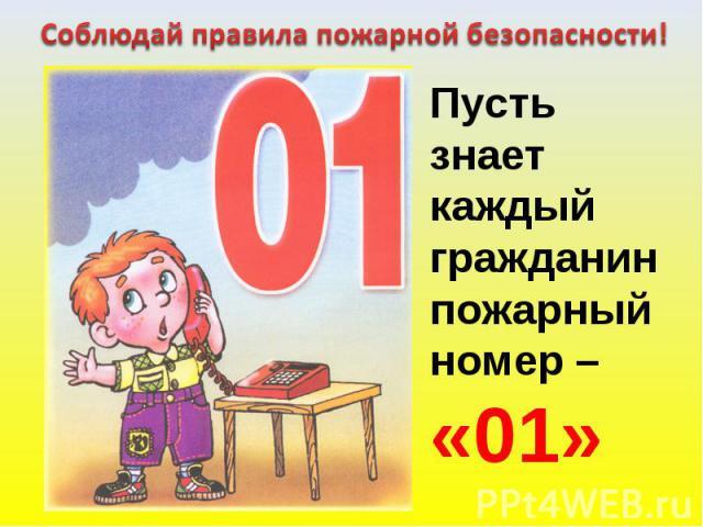 Соблюдай правила пожарной безопасности! Пусть знаеткаждыйгражданинпожарный номер –«01»