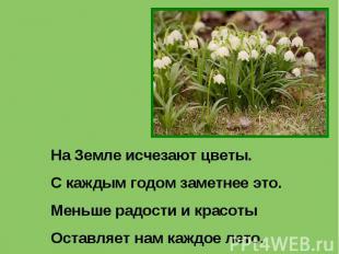 На Земле исчезают цветы.С каждым годом заметнее это.Меньше радости и красотыОста