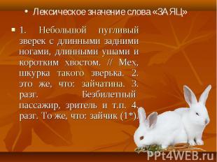 Лексическое значение слова «ЗАЯЦ» 1. Небольшой пугливый зверек с длинными задним