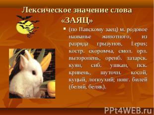 Лексическое значение слова «ЗАЯЦ» (по Павскому заец) м. родовое названье животно