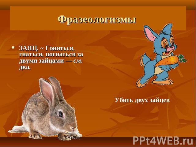 Фразеологизмы ЗАЯЦ. ~ Гоняться, гнаться, погнаться за двумя зайцами— см. два.Убить двух зайцев