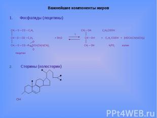 Важнейшие компоненты жиров Фосфатиды (лецитины) CH2 – O – CO – С17Н35 CH2 – OH С
