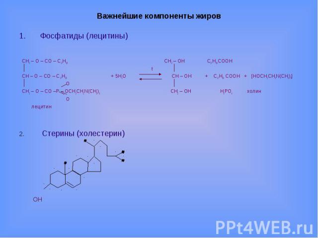 Важнейшие компоненты жиров Фосфатиды (лецитины) CH2 – O – CO – С17Н35 CH2 – OH С17Н35 СООН t CH – O – CO – С17Н33 + 5H2O CH – OH + С17Н33 СООН + [НОСН2СН2N(СН3)3] О CH2 – O – CO –Р – ОСН2СН2N(СН3)3 CH2 – OH Н3РО4 холин О лецитин2. Стерины (холестерин) ОН