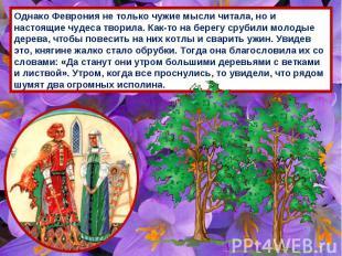 Однако Феврония не только чужие мысли читала, но и настоящие чудеса творила. Как