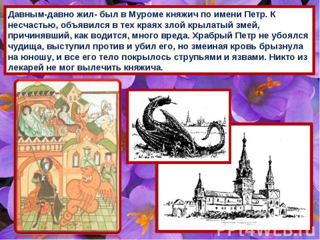 Давным-давно жил- был в Муроме княжич по имени Петр. К несчастью, объявился в тех краях злой крылатый змей, причинявший, как водится, много вреда. Храбрый Петр не убоялся чудища, выступил против и убил его, но змеиная кровь брызнула на юношу, и все …