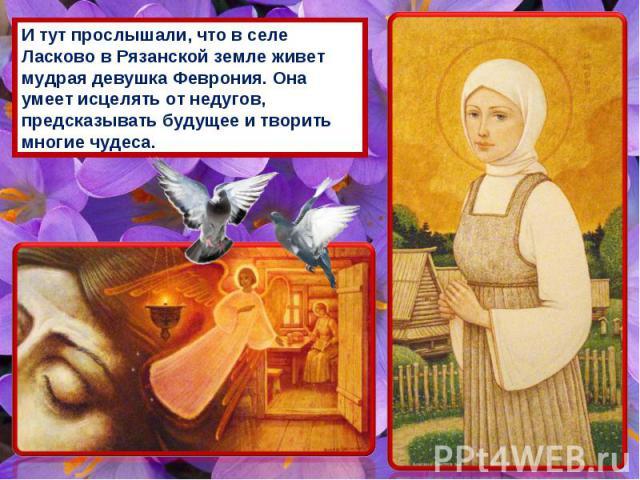 И тут прослышали, что в селе Ласково в Рязанской земле живет мудрая девушка Феврония. Она умеет исцелять от недугов, предсказывать будущее и творить многие чудеса.