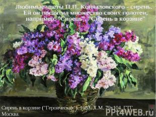 Любимые цветы П.П. Кончаловского - сирень. Ей он посвятил множество своих полоте