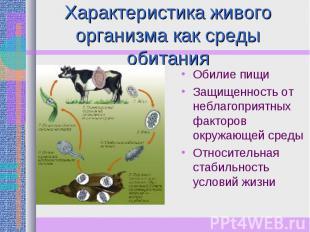 Характеристика живого организма как среды обитания Обилие пищиЗащищенность от не