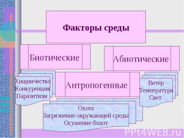 Факторы среды