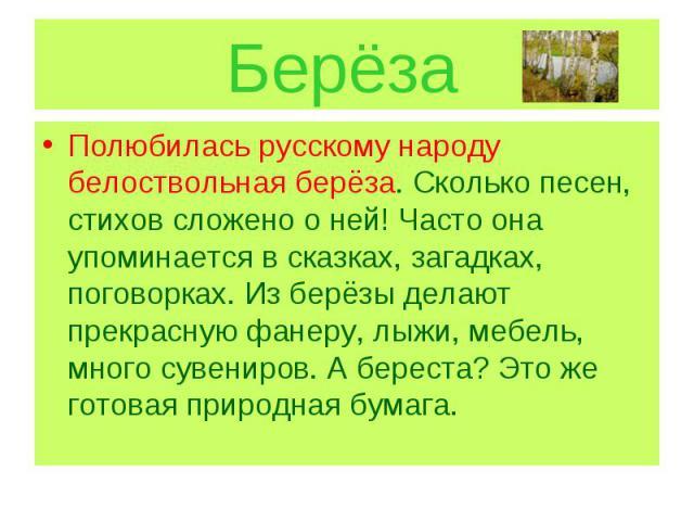 Берёза Полюбилась русскому народу белоствольная берёза. Сколько песен, стихов сложено о ней! Часто она упоминается в сказках, загадках, поговорках. Из берёзы делают прекрасную фанеру, лыжи, мебель, много сувениров. А береста? Это же готовая природна…