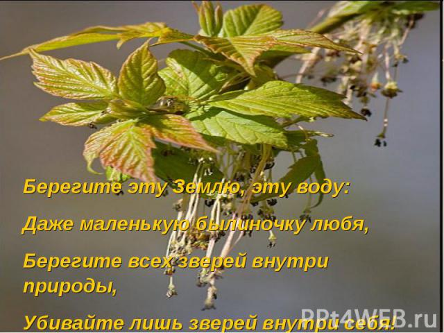Берегите эту Землю, эту воду:Даже маленькую былиночку любя,Берегите всех зверей внутри природы,Убивайте лишь зверей внутри себя!