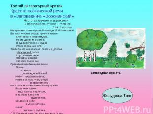 Третий литературный критикКрасота поэтической речив «Заповеднике «Воронинский» Ч