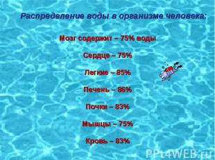 Распределение воды в организме человека: Мозг содержит – 75% водыСердце – 75%Лег