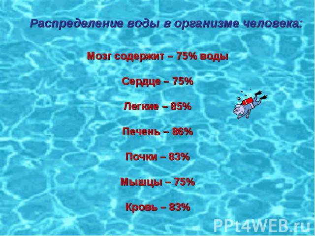 Распределение воды в организме человека: Мозг содержит – 75% водыСердце – 75%Легкие – 85%Печень – 86%Почки – 83%Мышцы – 75%Кровь – 83%